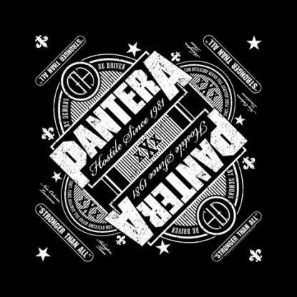 pantera stronger than all 1