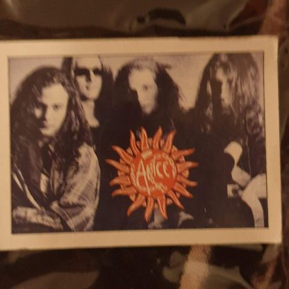 alice in chains band flag 1995