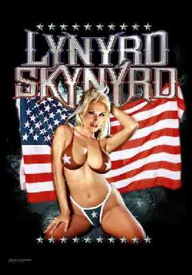 lynyrd skynyrd american girl flag