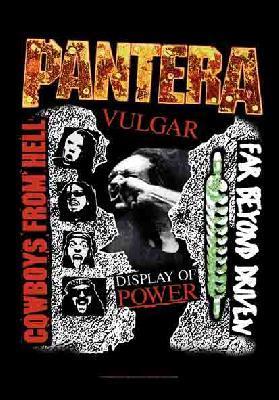 pantera 3 albums flag