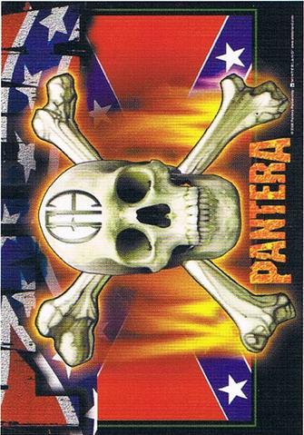 pantera rebel skull flag