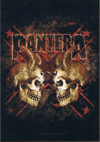 pantera two skulls flag