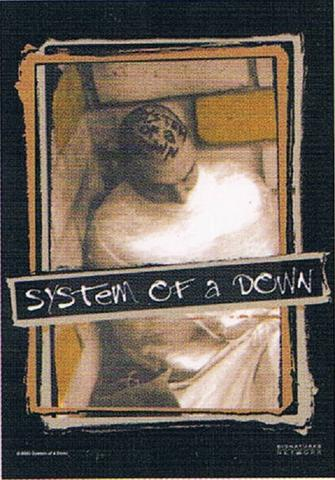 system of a down insane asylum flag